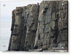 Cliff Climbers Acrylic Print