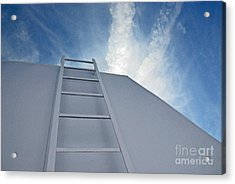 Acrylic Print featuring the photograph Climb Up by Lena Wilhite