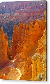 climbing out of the Canyon Acrylic Print