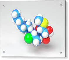 Clindamycin Antibiotic Molecule Acrylic Print by Indigo Molecular Images
