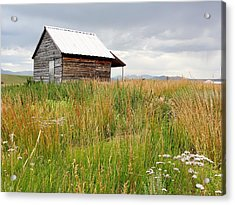 Cline Ranch Outbuilding II Acrylic Print by Lanita Williams
