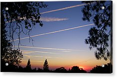 Cloaked Airplanes Acrylic Print by Tom Mansfield