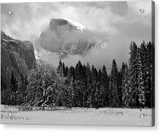 Cloaked In A Snow Storm - Monochrome Acrylic Print by Heidi Smith