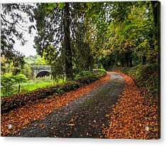 Clondegad Country Road Acrylic Print