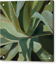 Close Cactus Acrylic Print