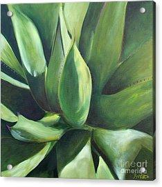 Close Cactus II - Agave Acrylic Print by Debbie Hart