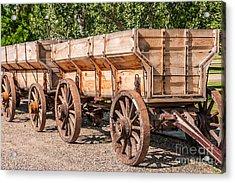 Close-up Of Grain Wagons Acrylic Print