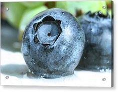 Closeup Of A Blueberry Acrylic Print by Sandra Cunningham