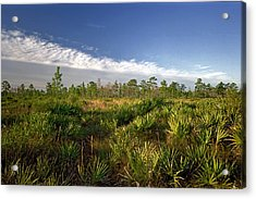 Cloud Line And Palmetto. Triple N Ranch.   Acrylic Print