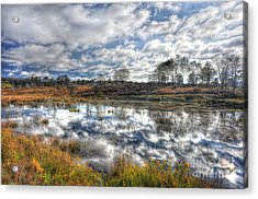 Cloud Reflections In Beaver Pond Canaan Valley Acrylic Print by Dan Friend