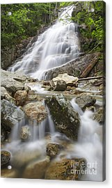 Cloudland Falls - Franconia Notch State Park New Hampshire Usa Acrylic Print