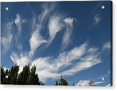 Acrylic Print featuring the photograph Clouds by David S Reynolds