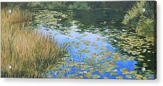 Clouds In The Pond Acrylic Print by Anna Lowther