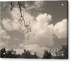 Clouds -shapes In Black-1 Acrylic Print by Katerina Kostaki