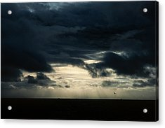 Clouds Sunlight And Seagulls Acrylic Print by Hakon Soreide