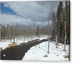 Acrylic Print featuring the photograph Cloudy Spring Day by Gene Cyr