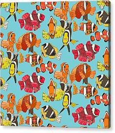 Clown Fish Blue Acrylic Print by Sharon Turner