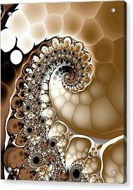Clutch Acrylic Print by Kevin Trow