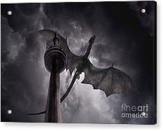 Cn Dragon Acrylic Print by Tom Straub
