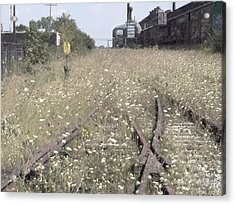 Cn Railroad 1 Acrylic Print by The Art of Marsha Charlebois