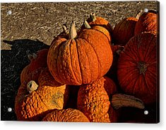 Acrylic Print featuring the photograph Knarly Pumpkin by Michael Gordon