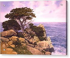 Coast At Lobos Acrylic Print by Tom Wooldridge