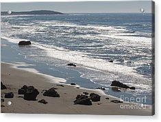 Coast Near Bodega Bay - 355 Acrylic Print by Stephen Parker