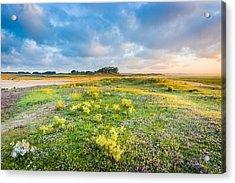 Coast Sunrise Acrylic Print by Maciej Markiewicz