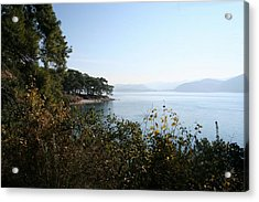 Acrylic Print featuring the photograph Coast by Tracey Harrington-Simpson