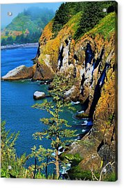 Coastal Color Acrylic Print