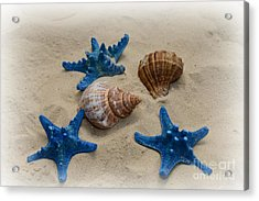 Coastal Dreams Acrylic Print by Paul Ward