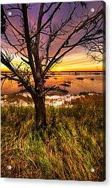 Coastal Harbor Acrylic Print by Debra and Dave Vanderlaan
