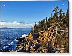 Coastal Maine Landscape. Acrylic Print by John Greim