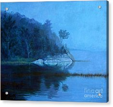 Coastal Mist   Acrylic Print by Gerard Natale