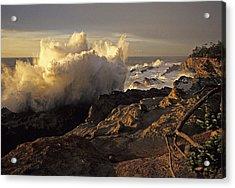 Coastal Storm Wave Acrylic Print
