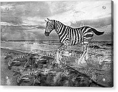 Coastal Stripes II Acrylic Print
