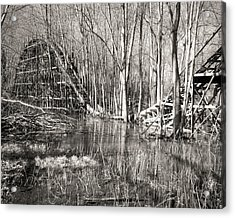 Coaster Reflections Acrylic Print by William Beuther