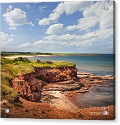 Coastline At East Point  Acrylic Print by Elena Elisseeva