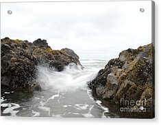 Cobble Beach Waves Acrylic Print by Sheldon Blackwell