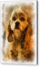 Cocker Spaniel Photo Art 04 Acrylic Print by Thomas Woolworth