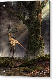 Coelophysis Acrylic Print by Daniel Eskridge