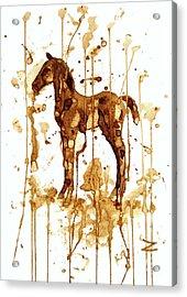 Coffee Foal Acrylic Print by Zaira Dzhaubaeva