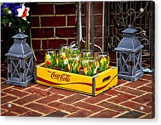 Acrylic Print featuring the photograph Coke And Daffodils by Williams-Cairns Photography LLC