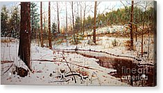 Cold Creek Arkansas Acrylic Print