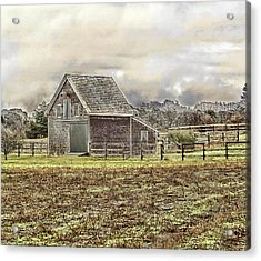 Acrylic Print featuring the photograph Cold Day by Constantine Gregory