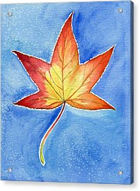 Cold Fall Sky Acrylic Print by Katherine Miller