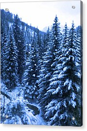 Cold In Colorado Acrylic Print