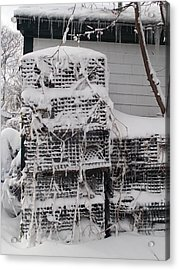 Acrylic Print featuring the photograph Cold Lobster Trap by Robert Nickologianis