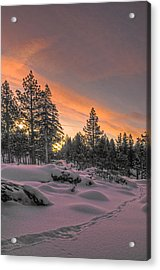 Cold Morning Acrylic Print