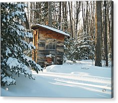 Acrylic Print featuring the photograph Cold Outlook by Susan Crossman Buscho